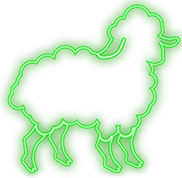 Neon Sheep Films